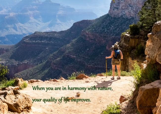 Harmony with nature